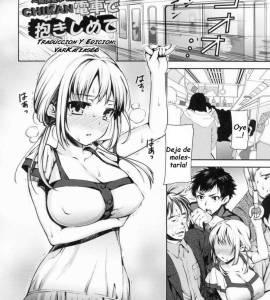 Hentai Porno - Chikan Densha De Dakishimete - hentai-manga-online